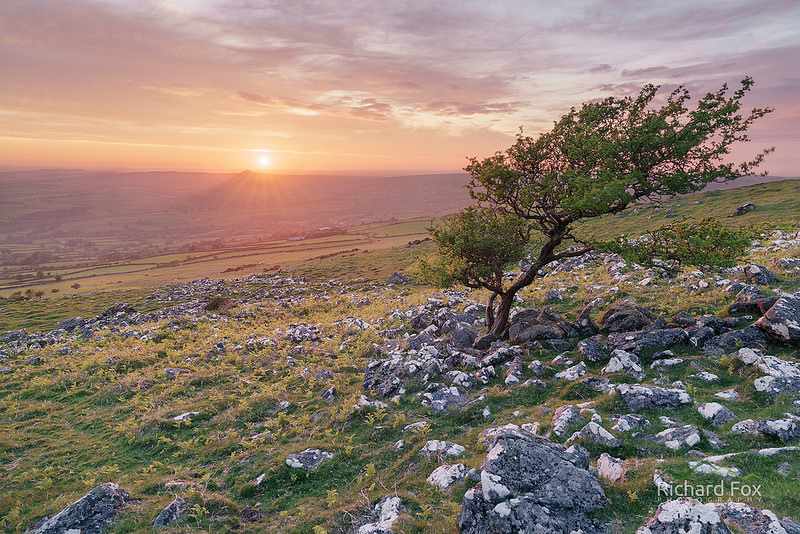 Cox Tor Sunset, Dartmoor