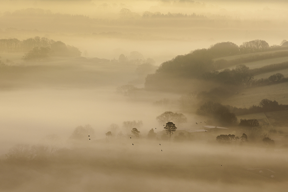Wray Valley at sunrise, East Dartmoor