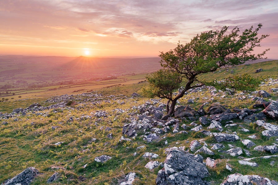 Cox Tor, Dartmoor at Sunset
